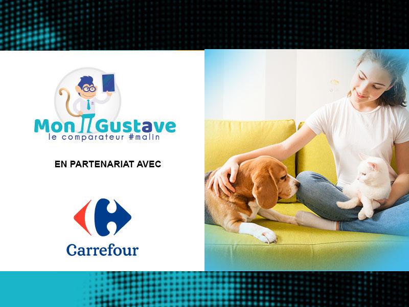 Carrefour partenaire de Mon Gustave